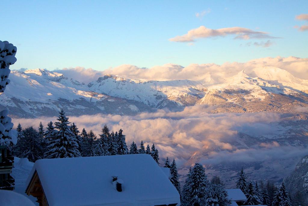 Boardingurlaub in der Schweiz 2011